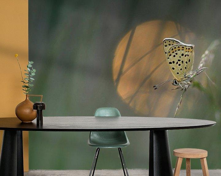 Sfeerimpressie behang: Bruine vuurvlinder van Jan Paul Kraaij