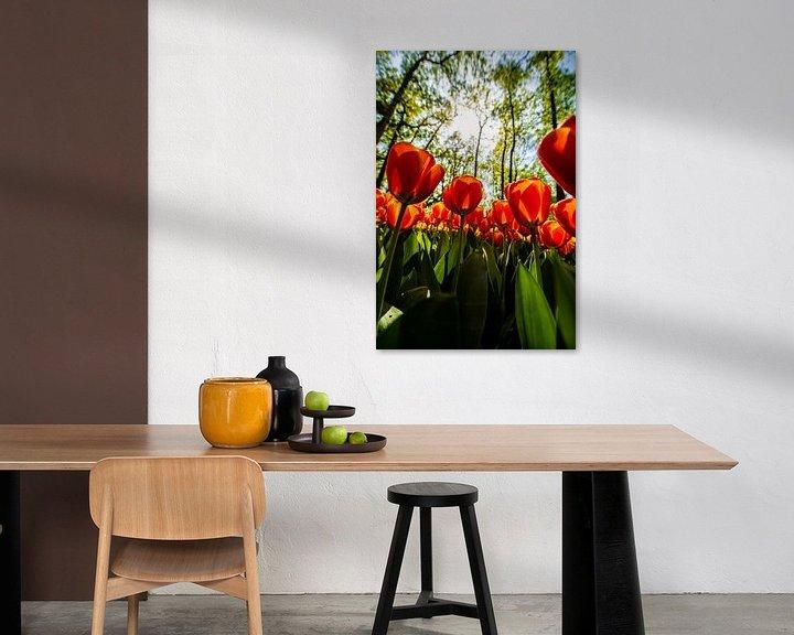 Sfeerimpressie: Rode Tulpen van Brian Morgan