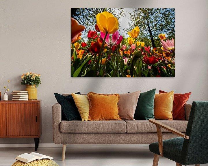 Sfeerimpressie: Tulpen in diverse Kleuren van Brian Morgan