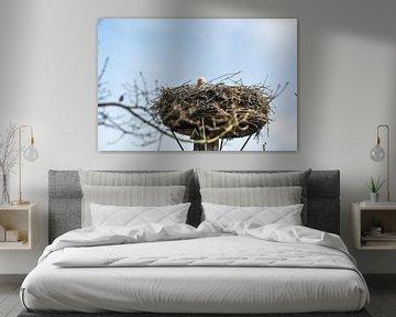 Een ooievaar op zijn nest van Heleen de Silva