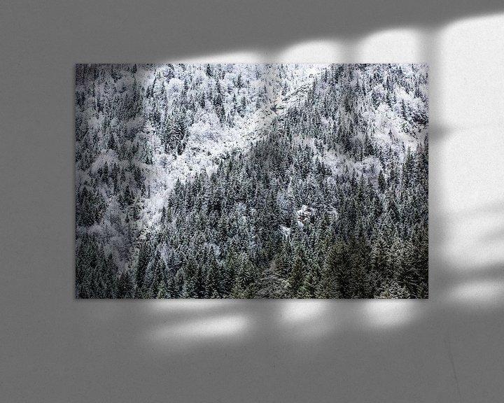 Impression: Forêt d'hiver dans les montagnes sur Frank Herrmann