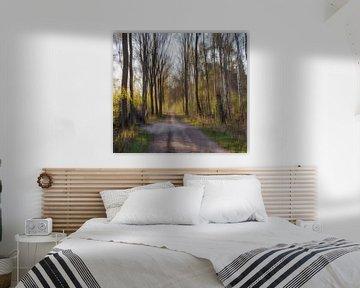abstract wandelpad van Tania Perneel