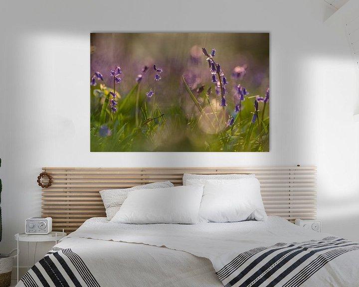 Sfeerimpressie: Blauwe boshyacinten in de ochtendzon van Jim De Sitter