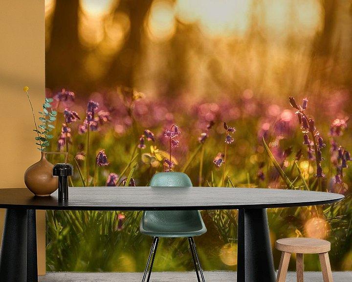 Sfeerimpressie behang: Blauwe boshyacinten in de ochtendzon van Jim De Sitter