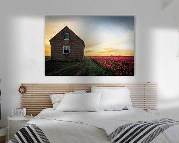 Dutch landscape van Peter Nijsen