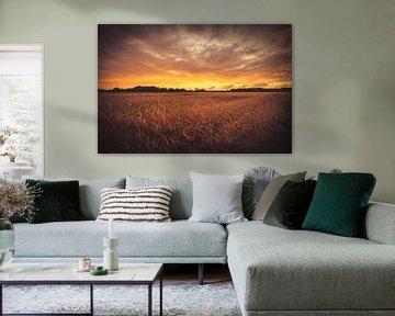 Champ au coucher du soleil sur Skyze Photography by André Stein