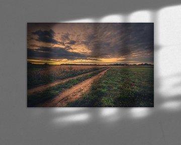 Feldweg im Sonnenuntergang