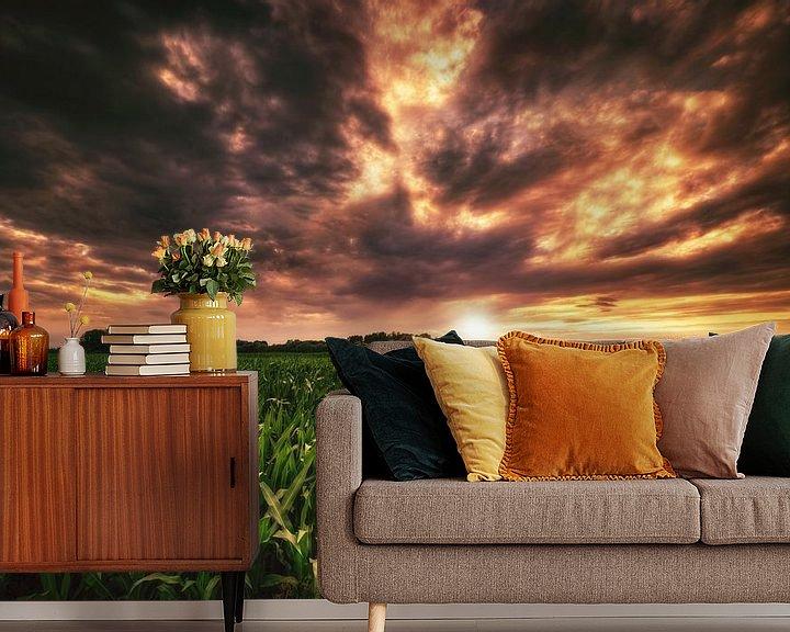 Beispiel fototapete: Maisfeld im Sonnenuntergang von Skyze Photography by André Stein