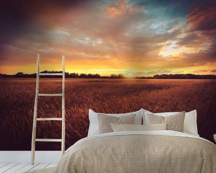Beispiel fototapete: Acker im Sonnenuntergang von Skyze Photography by André Stein