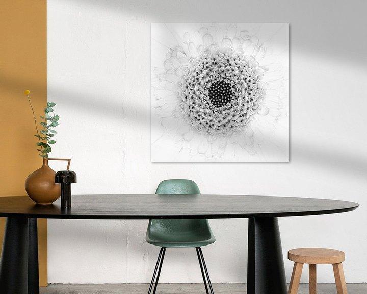 """Beispiel: """"High key"""" Blume schwarz/weiß 1 von Albert Mendelewski"""