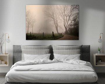 Mist van Paul Arentsen