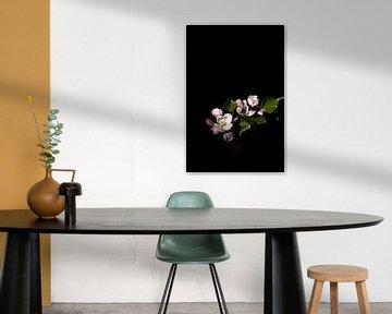 Apfelblüte von Lucia Leemans