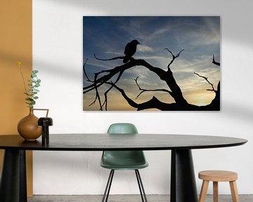 silhouet van vogel bij zonsondergang van Klaartje Majoor