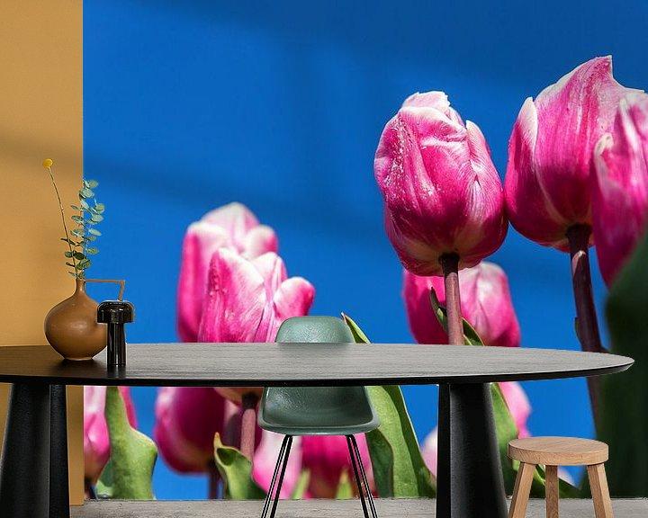 Impression: Tulipes roses et blanches sur Elly Damen