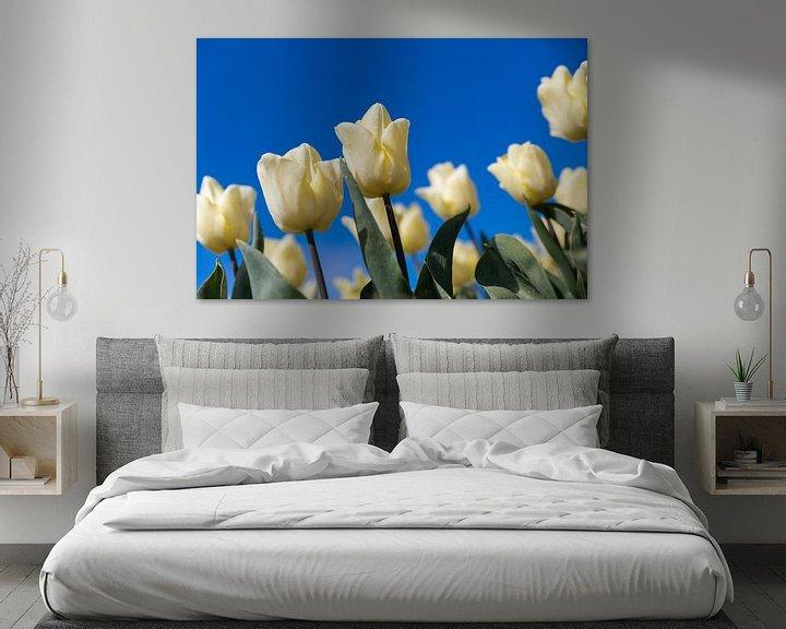 Sfeerimpressie: Witte tulp van Elly Damen