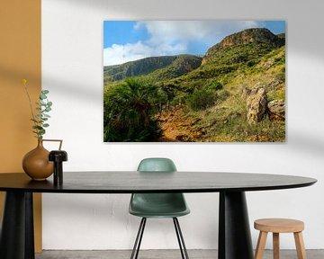 Ruig, bergachtig landschap in het natuurreservaat Zingaro, Scopello, Trapani, Sicilië, Italië. van Mieneke Andeweg-van Rijn