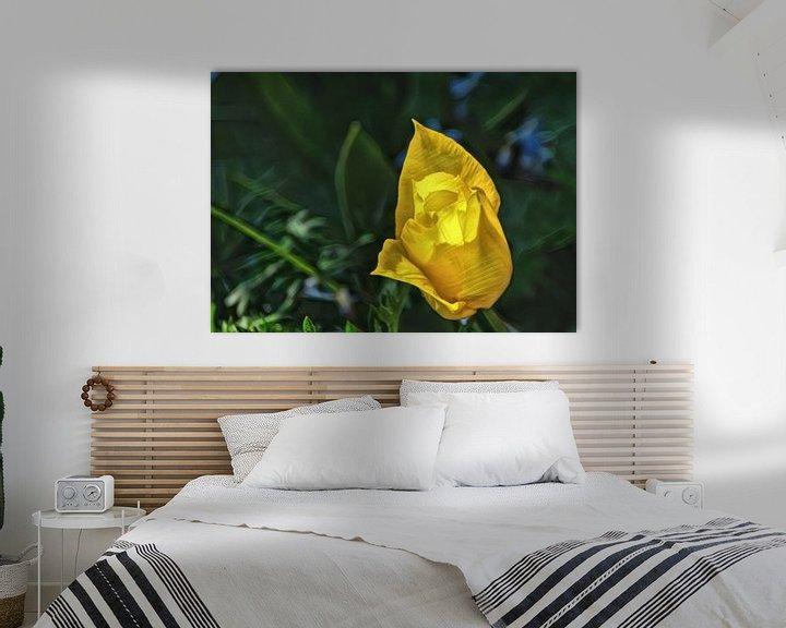 Beispiel: Eine sonnige Tulpe. von Jurjen Jan Snikkenburg