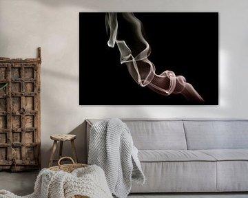 Rook 10 van Silvia Creemers