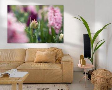 blühende Tulpe von Lisette van Gameren