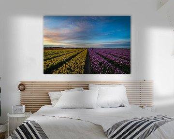 Blühende Tulpenfelder von Jan Willem Oldenbeuving
