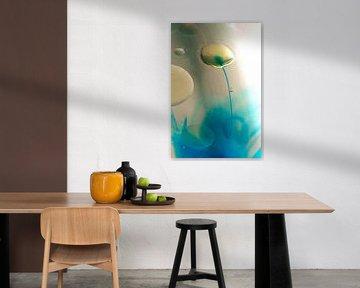 Waterlelie van Ronny Struyf