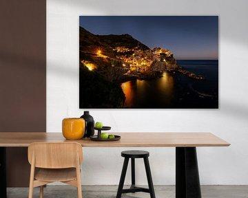 Cinque Terre aan de kust van Damien Franscoise