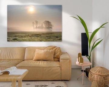 Gouden ochtendnevel op de velden  bij Keiem Diksmuide Westvlaanderen van Peschen Photography