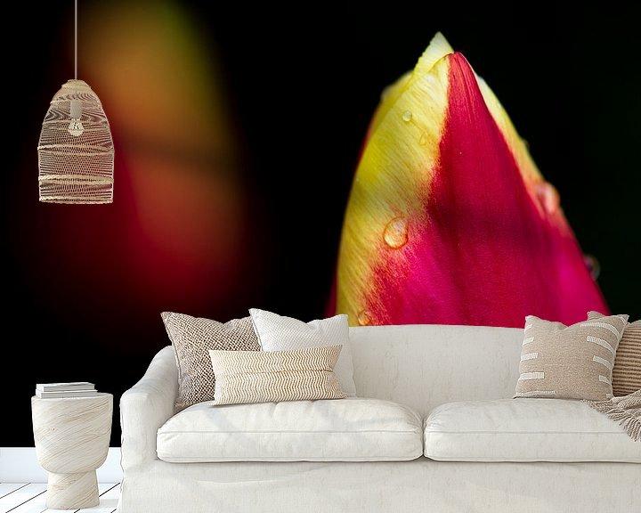 Sfeerimpressie behang: Tulp met regendruppels van Ton de Koning