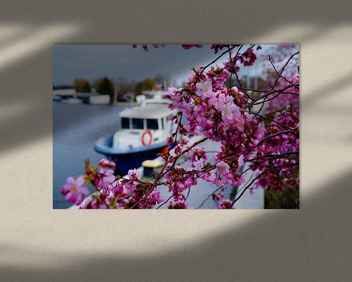 Beispiel: Kirschblüte von Bowspirit Maregraphy