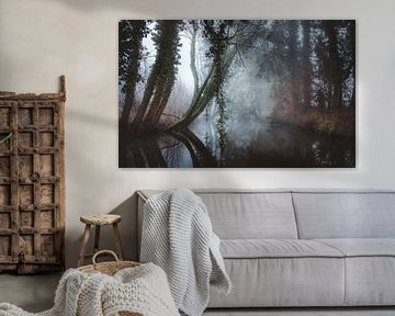 Magische bomen in de ochtend mist van Erwin Kamp