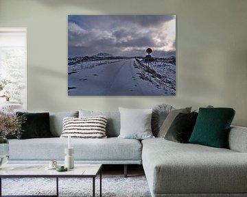 IJzige road trip in IJsland van Timon Schneider