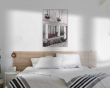 Straßenszene mit Blumentöpfen, Blumen und Fensterläden in Frankreich von Evelien Oerlemans