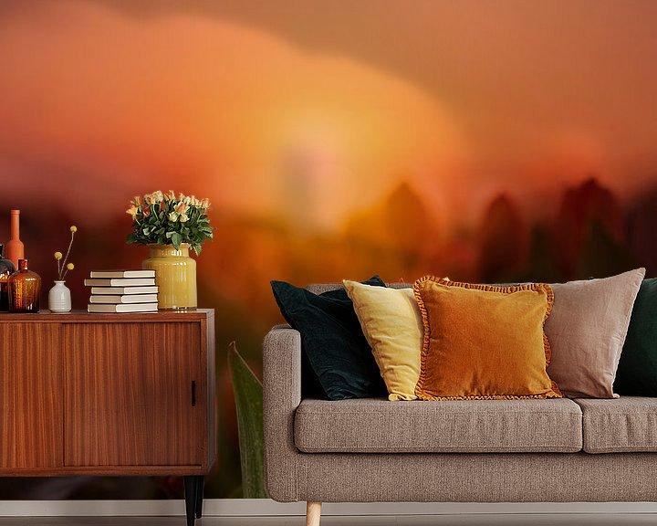 Beispiel fototapete: Tulpen bei Sonnenaufgang in Lisse von Marijke Groos