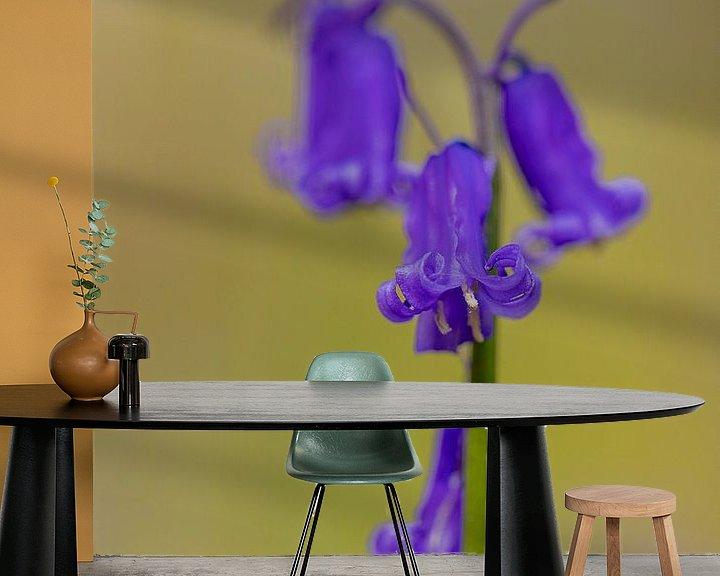 Impression: gros plan d'une belle jacinthe des bois en fleur dans le Hallerbos sur Kim Willems