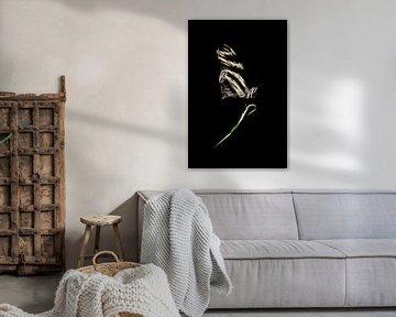 Vlinder op een blad (zilver) sur Ernst van Voorst