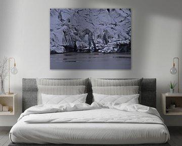 Sólheimajökull van Timon Schneider