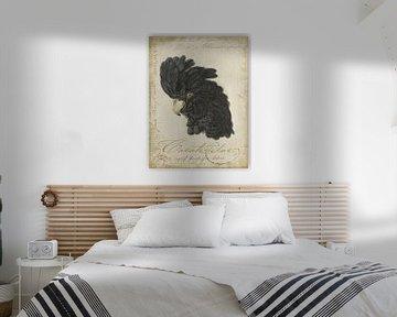 Schwarzer Kakadu von Andrea Haase