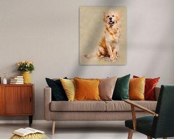 Golden Retriever van Pictura Designs