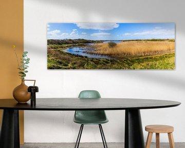 Panorama van natuurgebied Kroon's Polders op Vlieland van Henk Meijer Photography