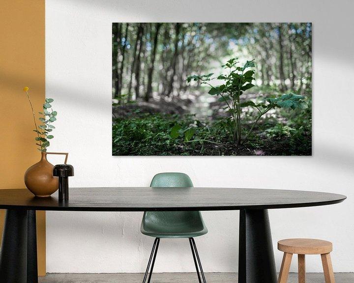 Impression: La forêt sur Miranda van Hulst