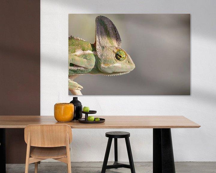 Beispiel: Portrait eines Chamäleons von Monodio Photography