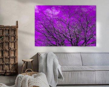 De natuur in een paarse kleur van J..M de Jong-Jansen