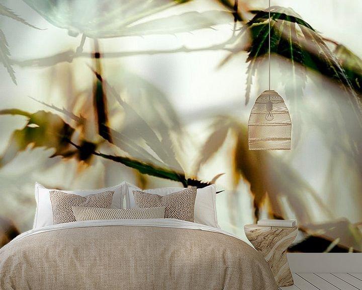 Sfeerimpressie behang: Bladeren van de Japanse Esdoorn van Paula van den Akker