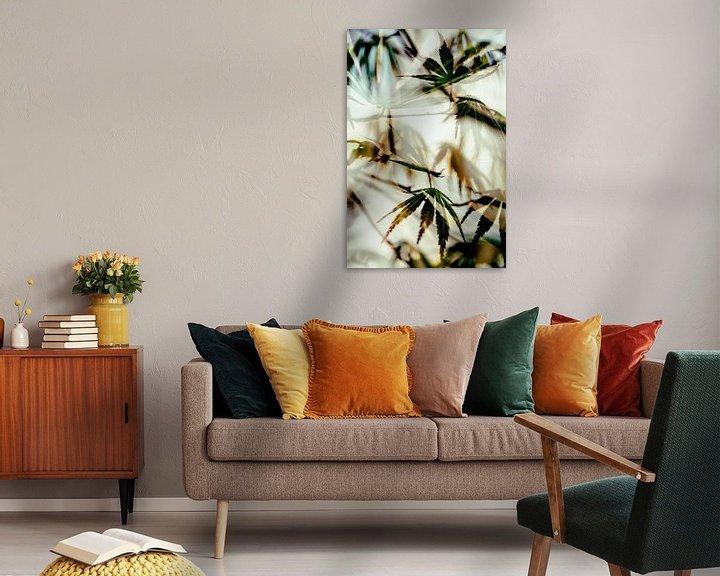 Sfeerimpressie: Bladeren van de Japanse Esdoorn van Paula van den Akker