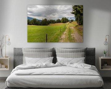 Bergweg von Thomas Heitz