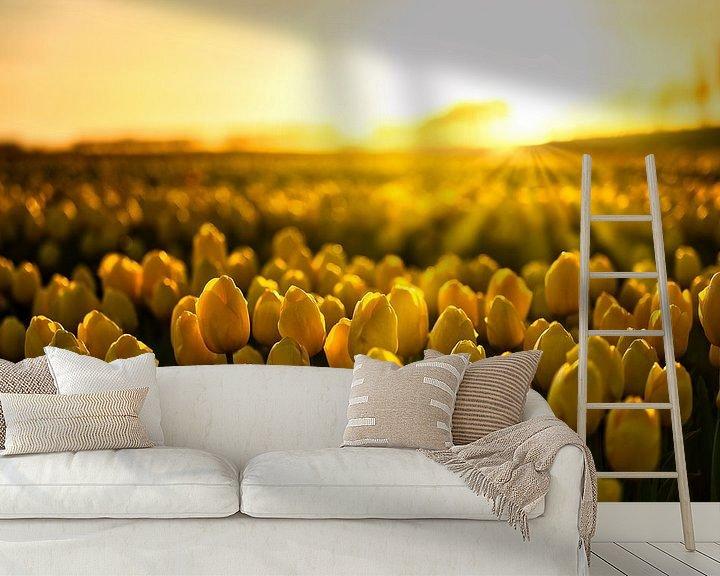 Beispiel fototapete: Tulpen in der goldenen Stunde von Jim Looise