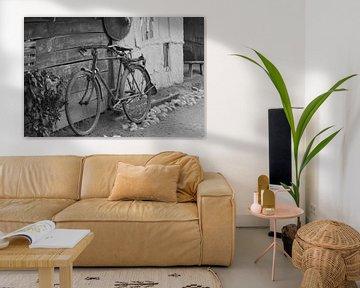 My Old Bicycle van Chris Moll