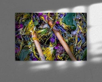 Blumensuppe von GoingDutch