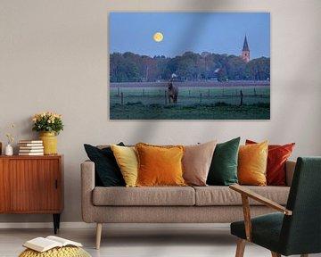 Toren van Rolde met maan en dromend paard
