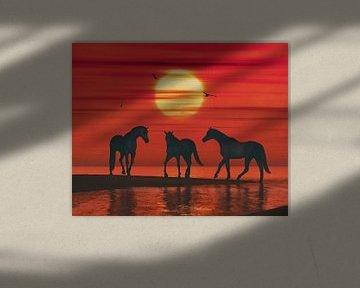 Een paard op het strand wachtend op de andere paarden van Jan Keteleer
